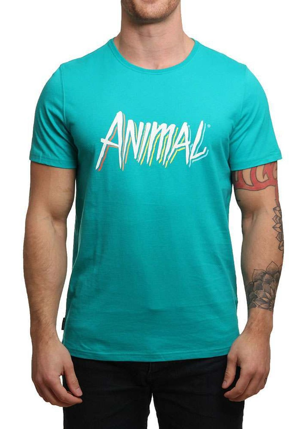 animal-malibu-tee-pool-green