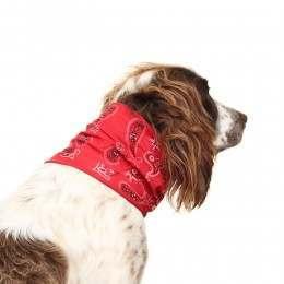 Buff Dog Bandana Cashmere Red