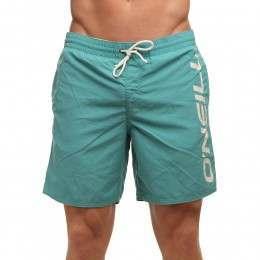 ONeill Vertical Boardshorts Green-Blue Slate