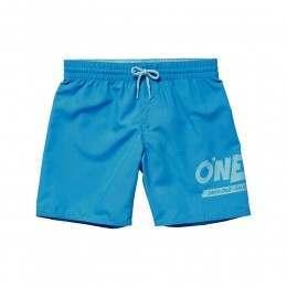 ONeill Boys Surf Cruz Boardshorts Dresden Blue
