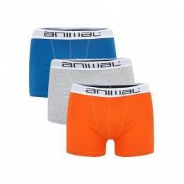 Animal Block 3 Pack Boxers Assorted