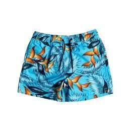 Quiksilver Boys Paradise Boardshorts Blue