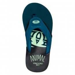 Animal Boys Jekyl Slice Sandals Legion Blue