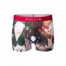 Pull-In Master Roberta Boxers Multi