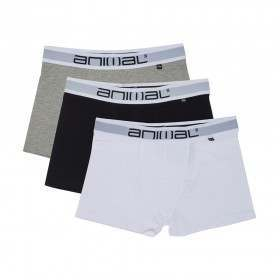 Animal Asta 3 Pack Boxers Assorted