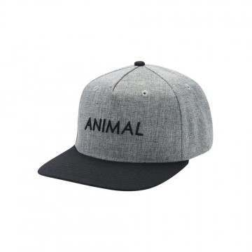 Animal Diverge Cap Grey