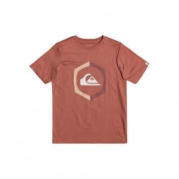 Quiksilver Boys Sure Thing Tee Redwood