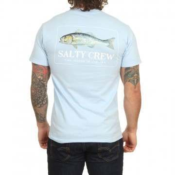 Salty Crew Branzino Tee Light Blue